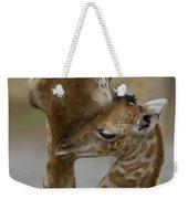 Rothschild Giraffe And Calf Weekender Tote Bag