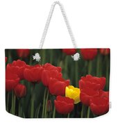 Rows Of Red Tulips With One Yellow Tulip Weekender Tote Bag