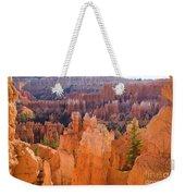 Sandstone Hoodoos Bryce Canyon  Weekender Tote Bag