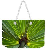Saw Palmetto  Weekender Tote Bag