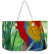 Scarlet Macaw Weekender Tote Bag