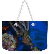 Seahorse And Coral Weekender Tote Bag