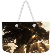 Silhouetted Tree With Sun Rays Weekender Tote Bag