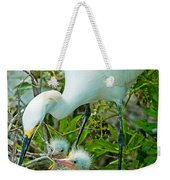 Snowy Egret Tending Young Weekender Tote Bag