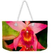 Sophronitis Orchid Weekender Tote Bag