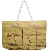 Spider Webs In Field On Tall Grass Weekender Tote Bag