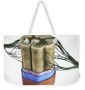 Spinal Cord Weekender Tote Bag