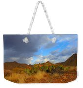 Springtime In Arizona Weekender Tote Bag