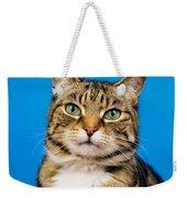 Tabby Cat Weekender Tote Bag