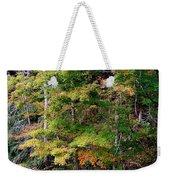 Tennessee Autumn Stream Weekender Tote Bag
