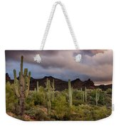 The Last Light  Weekender Tote Bag