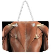 The Muscles Of The Back Weekender Tote Bag