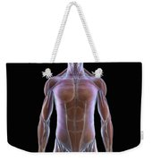 The Muscles Of The Upper Body Weekender Tote Bag
