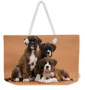 Three Boxer Puppies Weekender Tote Bag
