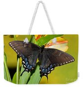 Tiger Swallowtail Butterfly, Dark Phase Weekender Tote Bag