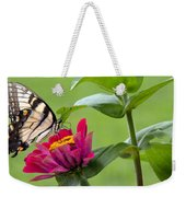 Tiger Swallowtail Butterfly On Zinnia Weekender Tote Bag