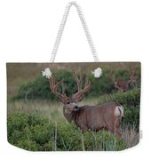Two In The Bush Weekender Tote Bag by Jim Garrison