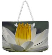 White Water Lily Weekender Tote Bag by Heiko Koehrer-Wagner