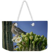 White-winged Dove Atop A Saguaro Weekender Tote Bag