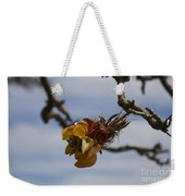 Wiliwili Flowers - Erythrina Sandwicensis - Kahikinui Maui Hawaii Weekender Tote Bag
