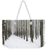 Winter Alley Weekender Tote Bag