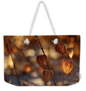 Winter's Light Weekender Tote Bag