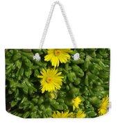 Yellow Ice Plant In Bloom Weekender Tote Bag
