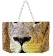 Lion Dafrique Panthera Leo Weekender Tote Bag