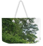 Camera Peak Thru Nature Buy Faa Print Products Or Down Load For Self Printing Navin Joshi Rights Man Weekender Tote Bag