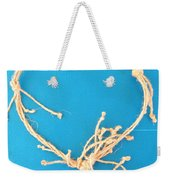 Aphrodite Urania Necklace Weekender Tote Bag by Augusta Stylianou