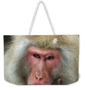 Japanese Macaque Weekender Tote Bag