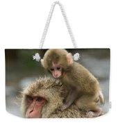 Snow Monkeys Japan Weekender Tote Bag