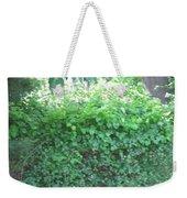 Camera Peak Thru Nature Buy Faa Print Products Or Down Load For Self Printing Navin Joshi Rights Man Weekender Tote Bag