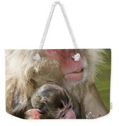 Snow Monkeys, Japan Weekender Tote Bag