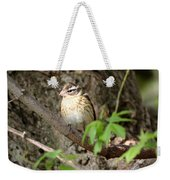 Rose Breasted Grosbeak Weekender Tote Bag