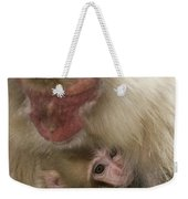 Snow Monkeys, Japan Weekender Tote Bag