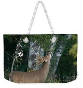 White-tailed Buck Weekender Tote Bag