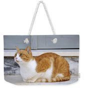 Cat In Hydra Island Weekender Tote Bag