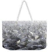Flock Of Common Crane  Weekender Tote Bag