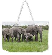 African Elephants Grazing  Kenya Weekender Tote Bag