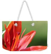 Asiatic Lily Named Red Twin Weekender Tote Bag