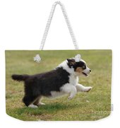 Australian Shepherd Puppy Weekender Tote Bag