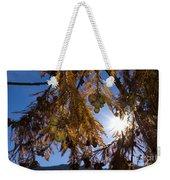 Autumn Coniferous Weekender Tote Bag