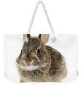 Baby Cottontail Bunny Rabbit Weekender Tote Bag by Elena Elisseeva