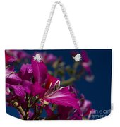 Bauhinia Purpurea - Hawaiian Orchid Tree Weekender Tote Bag