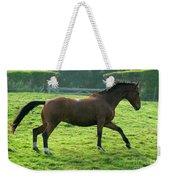 Bay Horse Weekender Tote Bag