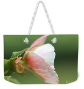 Begonia Named Nonstop Apple Blossom Weekender Tote Bag