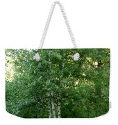 3 Birch Trees On A Hill Weekender Tote Bag