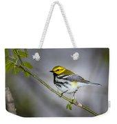 Black Throated Green Warbler Weekender Tote Bag