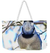 Blue Jay With Bread  Weekender Tote Bag